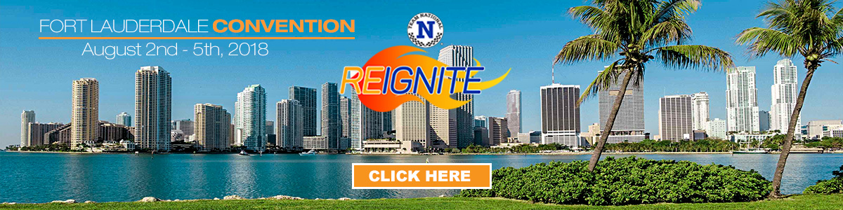 Team National - Reignite